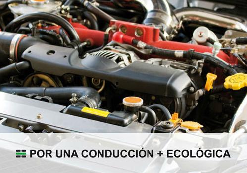 eco17